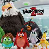 Win a Family Passes to Angry Birds 2
